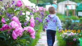 花园花 孩子沿沿花的道路跑 使用在花园里的男孩 愉快 股票视频