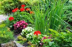花圃片段 免版税库存照片