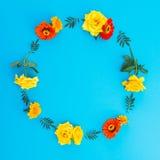 花圆的框架在蓝色背景的 平的位置,顶视图 背景细部图花卉向量 免版税库存照片