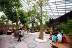 花圆顶内部在滨海湾公园,新加坡 库存图片