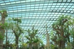 花圆顶,由海湾的庭院 免版税库存图片