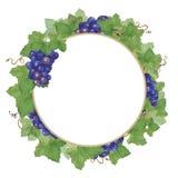 花圈葡萄2 库存图片