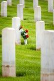 花在一个军事坟园 库存图片