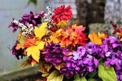 花在坟园 库存图片