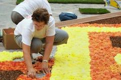 花地毯2012年 免版税库存照片