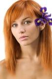 花头发的紫色红色 库存图片
