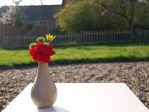 花小诗句与红色康乃馨的 免版税库存图片