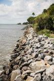 花岗岩在海岸的防波堤和棕榈树 库存图片