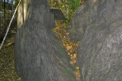花岗岩岩石在森林南乌拉尔里 免版税库存照片