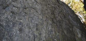 花岗岩岩石在森林南乌拉尔里 图库摄影