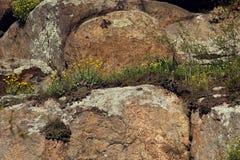 花岗岩岩石 库存照片