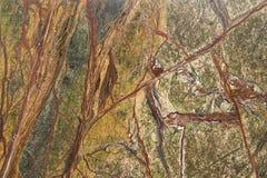 花岗岩平板 库存照片