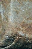 花岗岩石头纹理  免版税库存照片