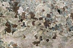 花岗岩被察觉的褐色和桃红色 图库摄影