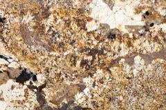 花岗岩gvavino silria 库存照片