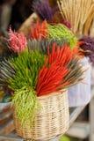 花市场在清迈,在泰国 库存照片