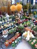花市场在维也纳 库存照片