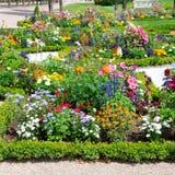 花床在夏天公园 库存图片