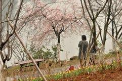 花床在植物园里 图库摄影