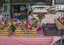 花店-罗阿诺克市市场 免版税库存图片