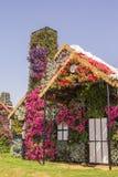 花惊人的五颜六色的房子在奇迹庭院里 免版税库存照片