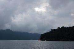 花托在湖 图库摄影