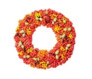 从花揪、在白色背景顶视图和各种各样的果子的秋天花圈隔绝的橡子、花 平位置称呼 免版税库存照片