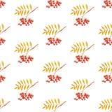 花揪分支无缝的样式白色背景 免版税库存图片