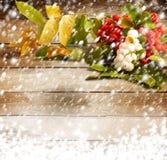 花揪分支用在积雪的背景的莓果 免版税库存图片