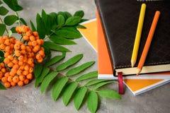 花揪分支,笔记本,铅笔 免版税图库摄影