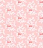 花揪 与叶子和莓果的白色分支 无缝的模式 库存图片