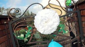 花新娘花束,在桌上的美丽的新娘花束,新郎钮扣眼上插的花,婚礼之日,新娘的花束 影视素材