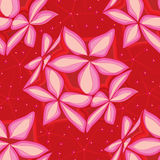 花星灯笼星无缝的样式 免版税图库摄影