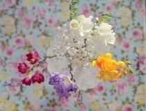 花束上色弹簧 库存图片