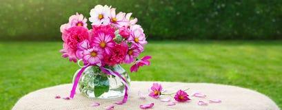 花束五颜六色的波斯菊花 另外的卡片形式节假日 免版税库存图片