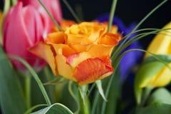 花束五颜六色的花 免版税库存图片