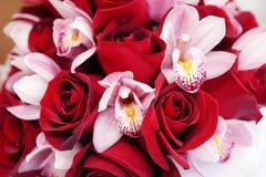 花束兰花上升了 库存图片
