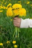 花束在儿童的手上 免版税库存图片