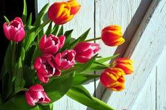 花束复活节木春天的郁金香 免版税库存照片