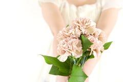 花束康乃馨日母亲s 图库摄影