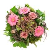 花束开花弹簧 桃红色开花玫瑰雏菊 免版税库存图片