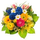 花束开花弹簧 郁金香,毛茛属,风信花,雏菊, gerb 库存照片