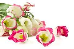 花束开花lisianthus粉红色 免版税库存图片
