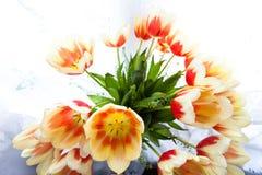 花束彩色插图模拟郁金香向量水 免版税库存图片