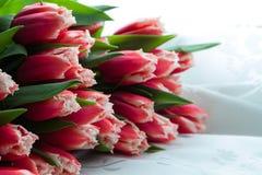 花束彩色插图模拟郁金香向量水 免版税库存照片