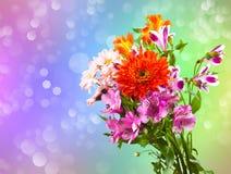 花束明亮的花 库存图片
