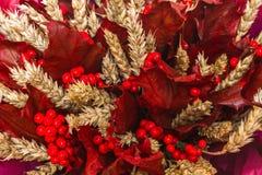 花束构成 有麦子耳朵的红槭叶子 免版税库存图片