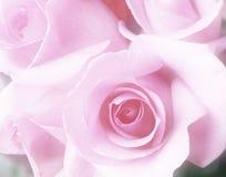 花束桃红色玫瑰 图库摄影