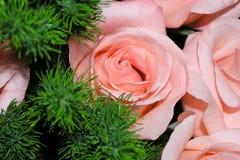 花束桃红色玫瑰 库存图片