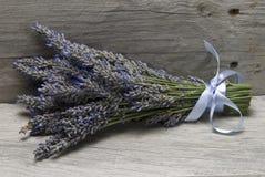 花束淡紫色架子 图库摄影